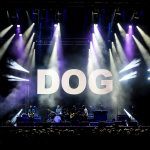 adelrm DOG 02