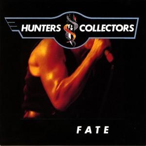 Fate (cover)